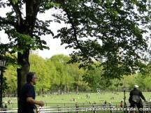 Sheep Meadow, uma boa área para fazer piqueniques