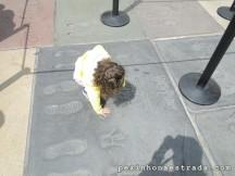 Hollywood Walk of Fame, a Calçada da Fama