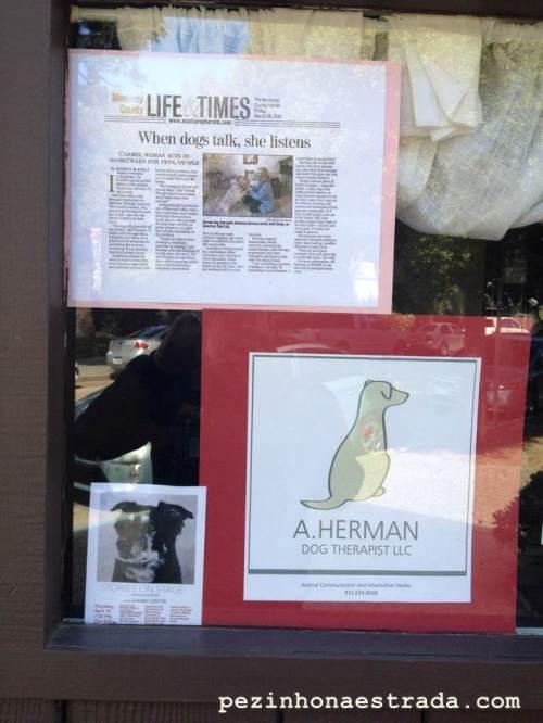 Terapeuta para cachorros, em Carmel