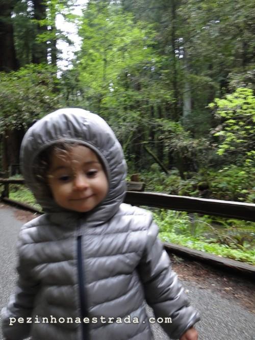 Bela no Muir Woods National Monument, com a parca da Uniqlo.