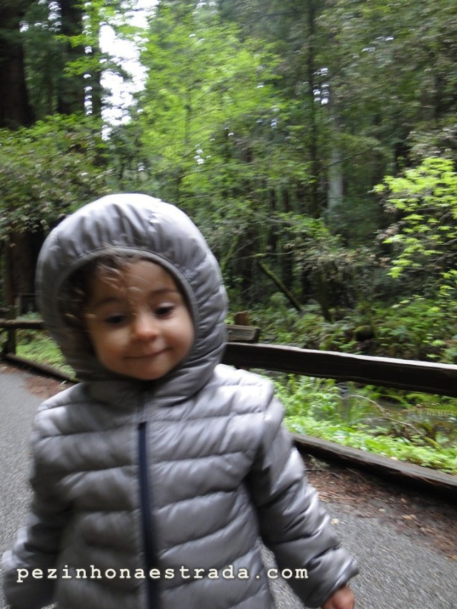 Bela no Muir Woods National Monument, com a parca da Uniqlo.
