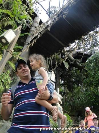 Casa do Tarzan!