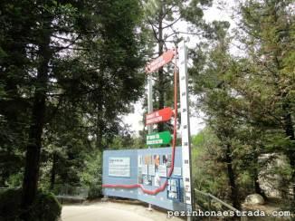 Educação ambiental no San Diego Zoo