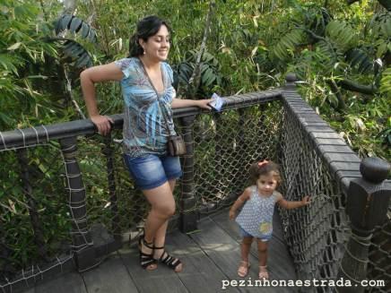 Casa do Tarzan, Disneyland