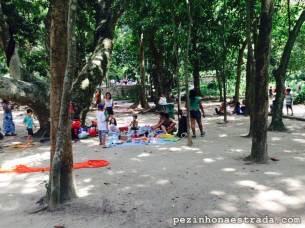 Famílias fazendo piquenique no Parque Lage